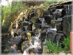 121113-1玉川上水