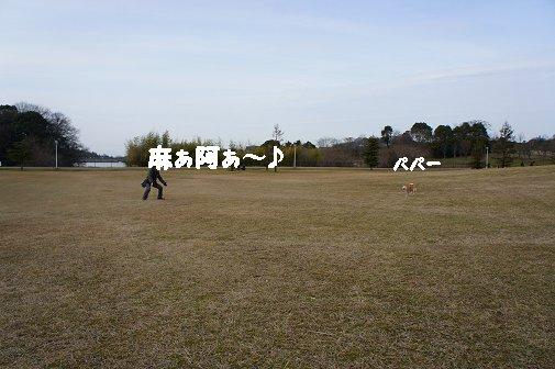2013021703.jpg