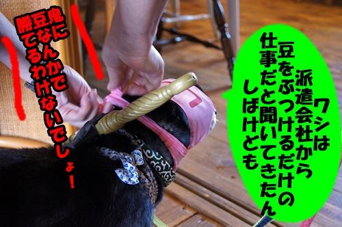 20140111-014.jpg