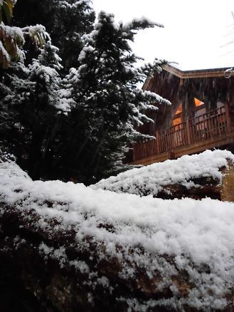 初雪(2012年11月)