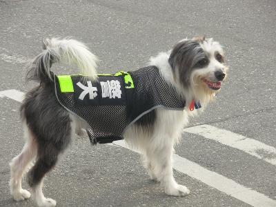 台湾2013冬2 (57)