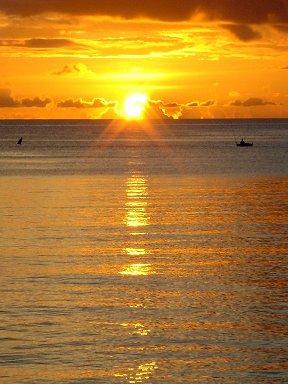黄金の海に陽が落ちてゆくdownsize