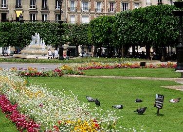 ルヴァロワHotel de Villeの庭で遊ぶハトさんたちREV downsize