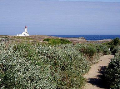 プーレン岬の灌木の台地と灯台REVdownsize
