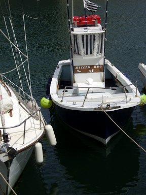 こんなちっちゃな一人乗りの釣り船もいますdownsize