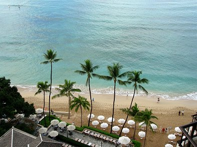 朝のそよ風が静かなビーチを抜けてゆくREVdownsize