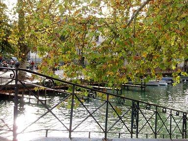 秋の陽が水面にきらめくボート乗り場downsize P1010420