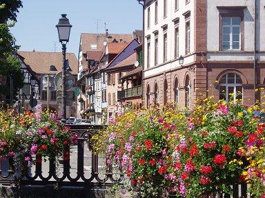 コルマー花で飾られた運河downsize