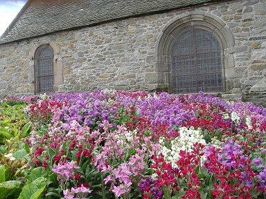 ブルターニュ漁村ロスコフの花に埋もれた教会Roscoff16downsize