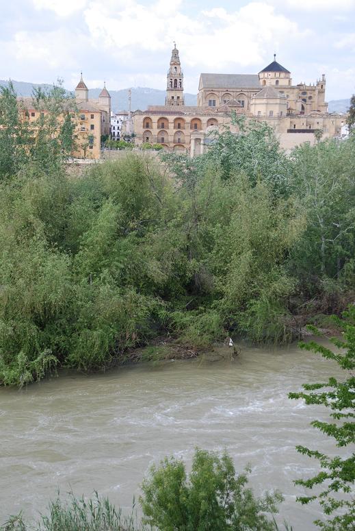 川とメスキータ