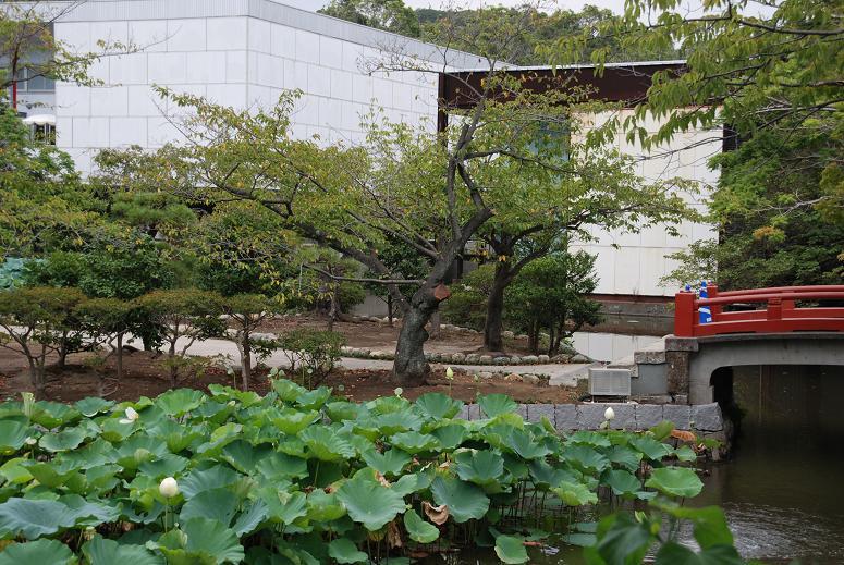鎌倉の美術館