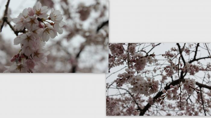 2013-03-244_convert_20130330023253.jpg