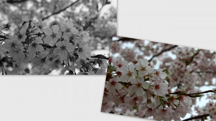 2013-03-26_convert_20130401021559.jpg
