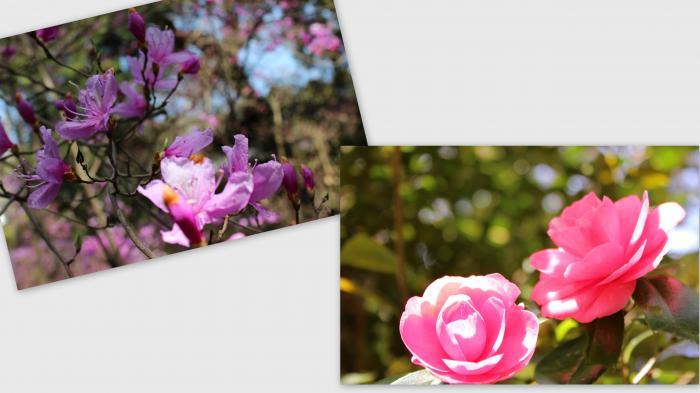 2013-04-047_convert_20130412004313.jpg
