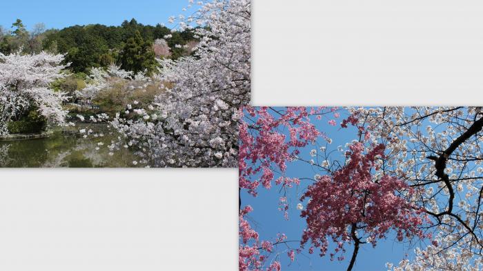 2013-04-058_convert_20130422005656.jpg