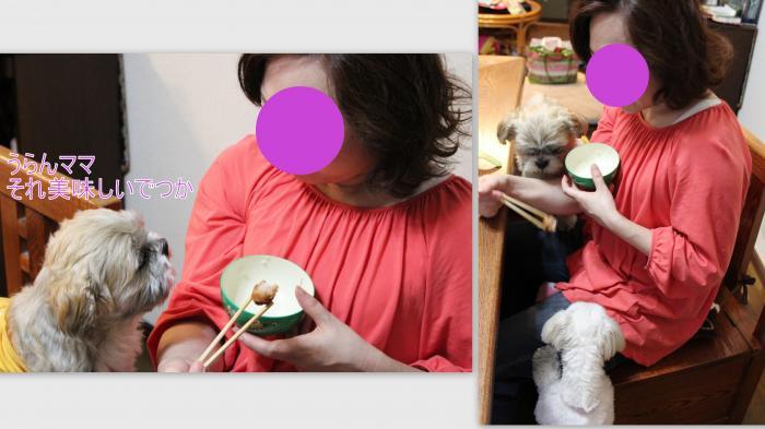 2013-05-026_convert_20130526224320.jpg
