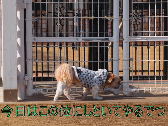 ・搾シ捻3057924_convert_20130313013656