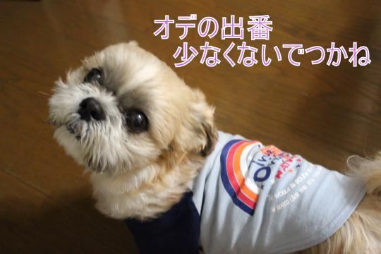 ・搾シ肘MG_3427_convert_20130314224137
