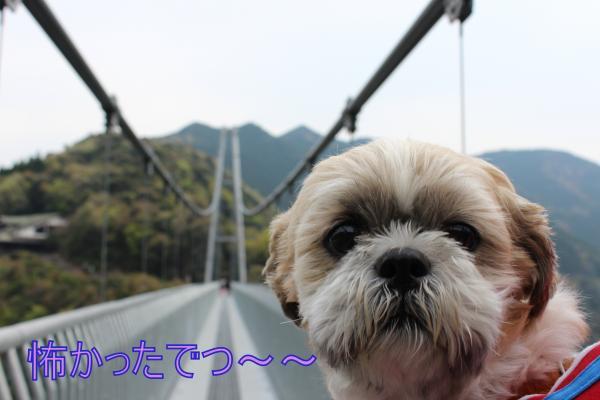 ・搾シ祢MG_3993_convert_20130402010914