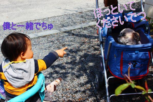 ・搾シ肘MG_4274_convert_20130414012007