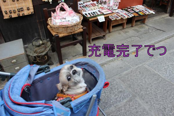 ・搾シ棚MG_4629_convert_20130501020953