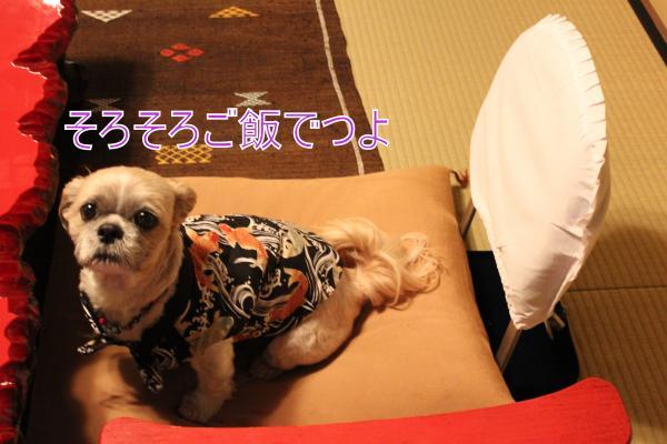 ・搾シ祢MG_4707_convert_20130501232135