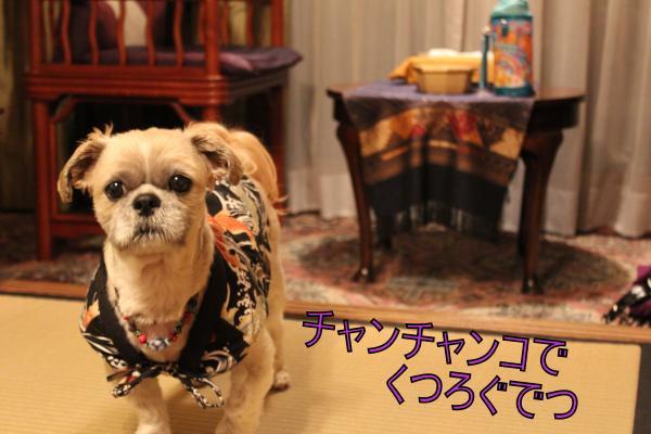 ・搾シ祢MG_4714_convert_20130501232015