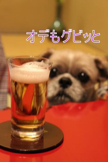・搾シ祢MG_4705_convert_20130501231936