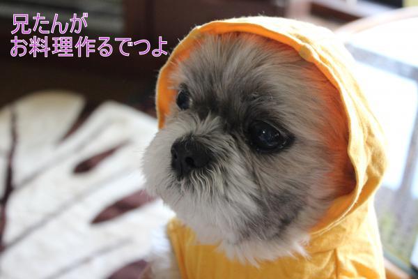 ・搾シ祢MG_5312_convert_20130512223248