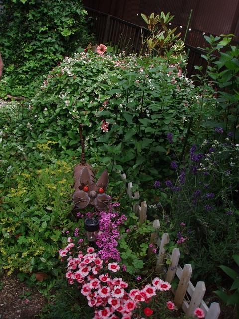 花と猫 (2)