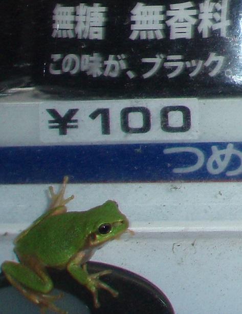 PA020139.jpg