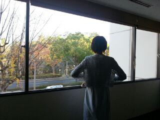 image_20121101203912.jpg