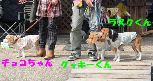 IMG_7236-1.jpg