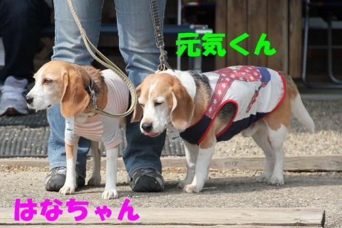 IMG_7245-1.jpg