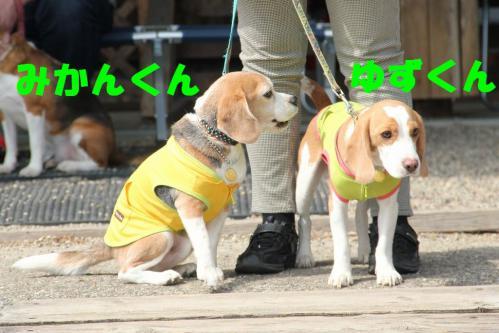 IMG_7247-1.jpg