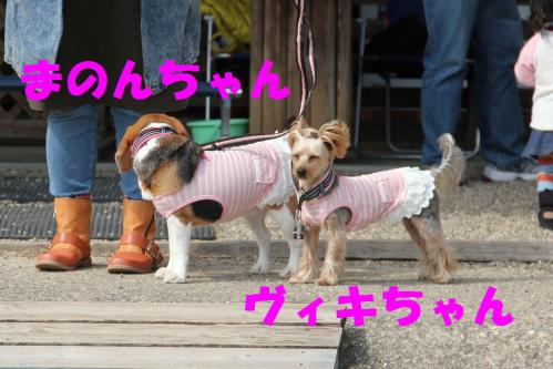 IMG_7259-1.jpg