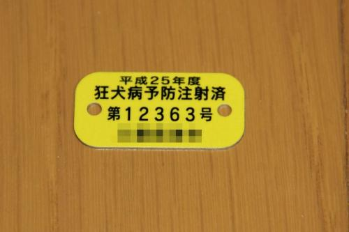 IMG_7582-1.jpg