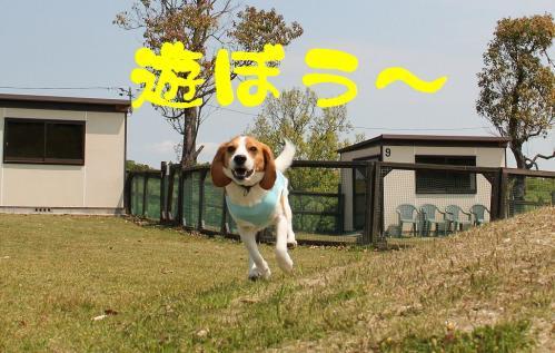 IMG_8188-1.jpg