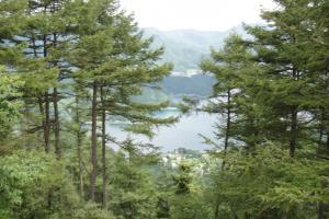 河口湖を望む