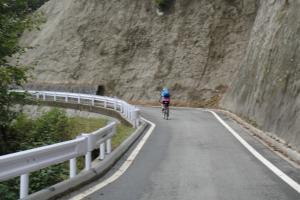 自転車海苔が多数