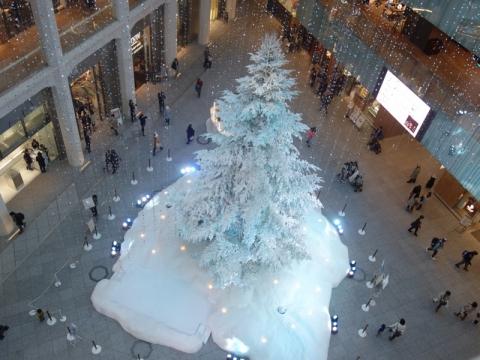KITTEに大きなクリスマスツリー