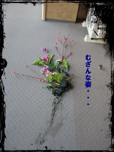 IMG_4284.jpg