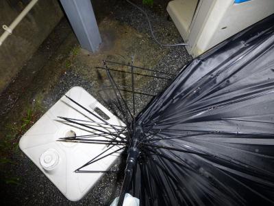 10_16本傘も無残