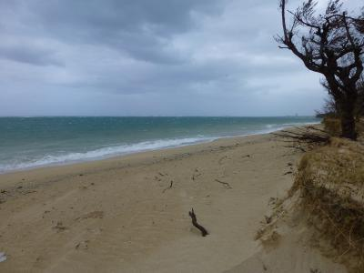 107_嵐のビーチ