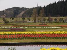 20120501_009.jpg