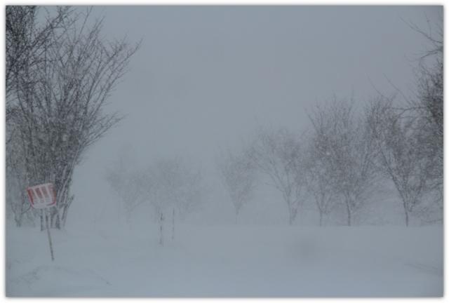 弘前 吹雪