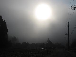 20110811-15生杉 023