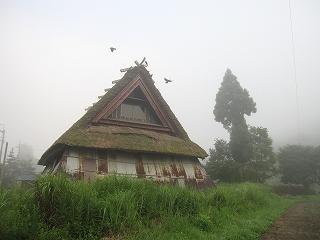 20110811-15生杉 033