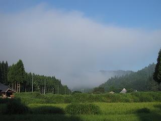 20110811-15生杉 041
