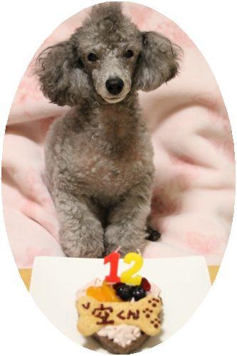 空とお誕生日ケーキ♪